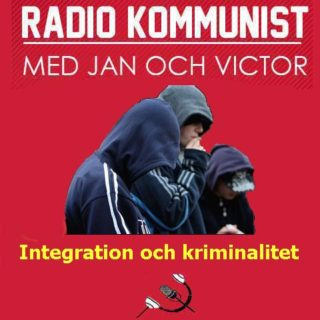 Integration och kriminalitet