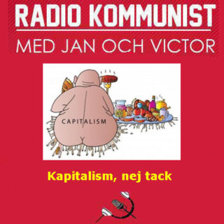 Kapitalismen är problemet