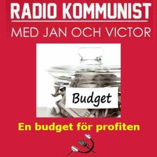 Budget för profiten