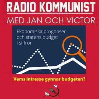 Vems intresse gynnar budgeten?